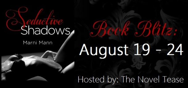 Seductive Shadows Book Blitz Banner