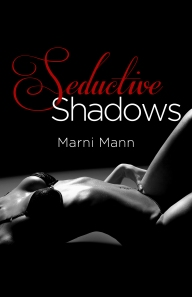Seductive Shadows Cover