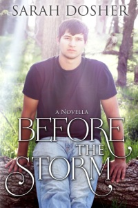 Before the Storm Cover