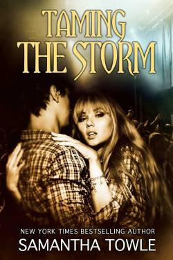 Taming the Storm Cover